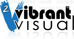 Orlando Web Design, Orlando Web Marketing, Orlando Logo Design - Vibrant Visual